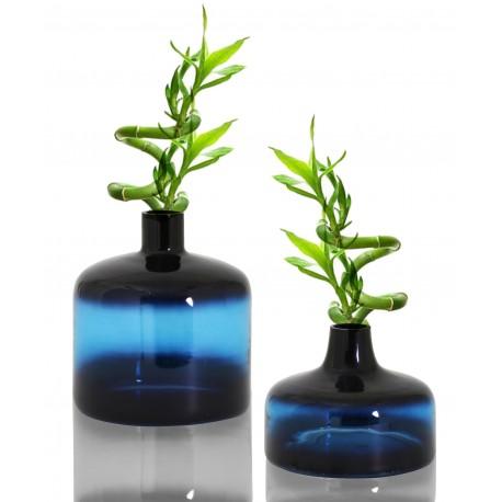 Duo de Vases OBY en verre soufflé Klein - MEDIEUM