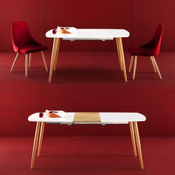 Table extensible KAMI
