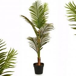 Palmier tropical ARECA - 110 cm