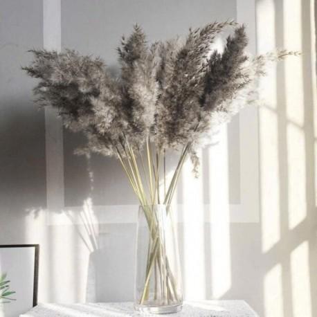 Fleur de PAMPA 117cm - 3 branches grises séchées