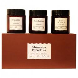 Coffret cadeau Bougies - MÉMOIRE OLFACTIRE - 3 parfums